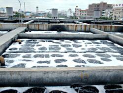 污水处理厂好氧池